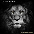 Love Is A Lion Cover