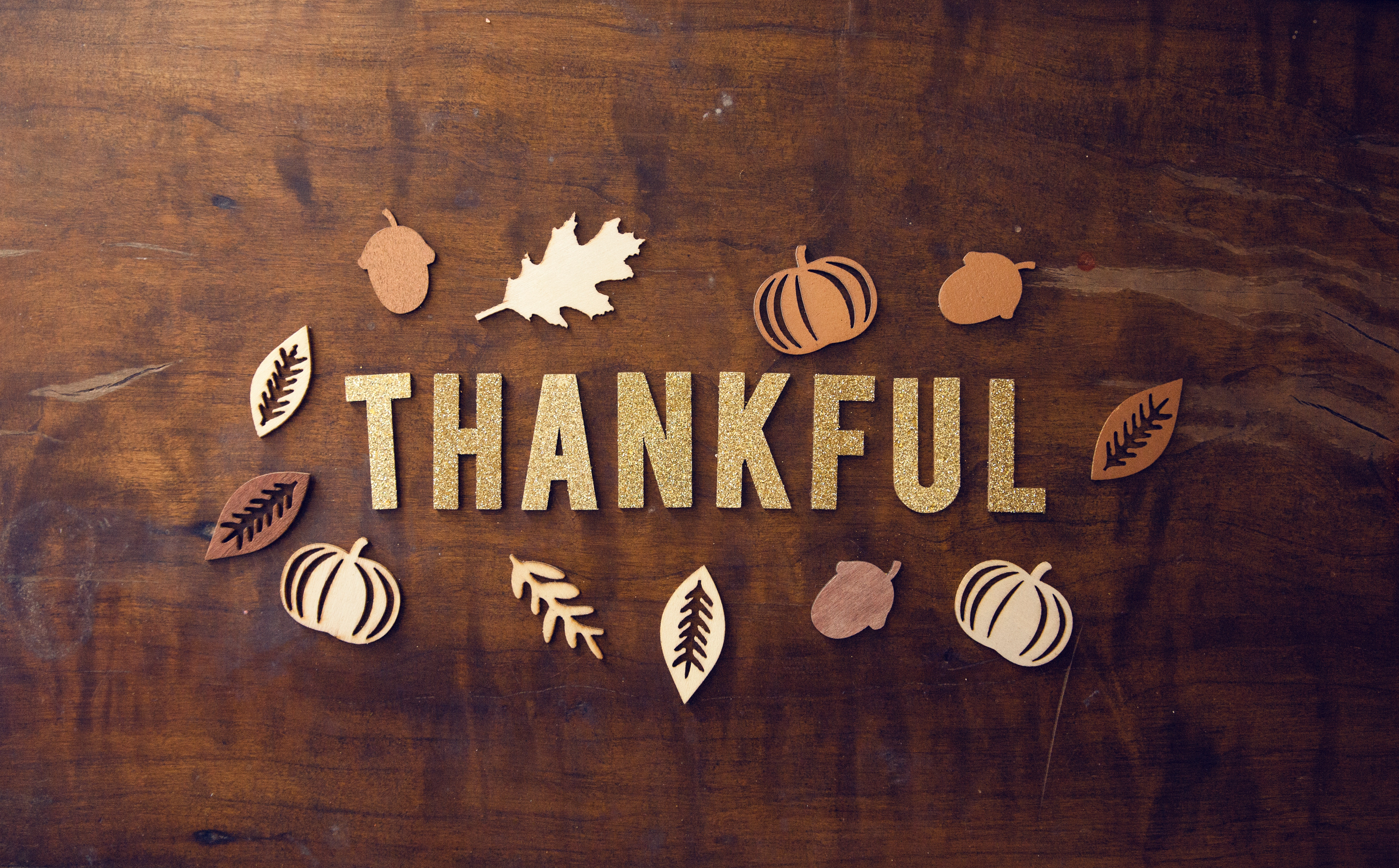 Our Favorite Bible Verses on Being Thankful | Freeccm.com